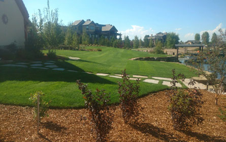 Landscaping Services Longmont Colorado