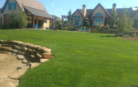 Residential Sod Installation Fort Collins Colorado