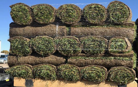 Sod Delivery Thornton Colorado